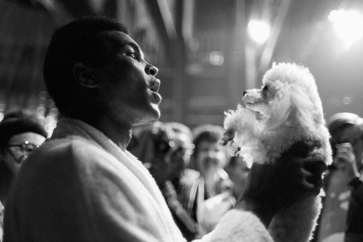 1973-Muhammad-Ali-poodle-dog-080062776.jpg