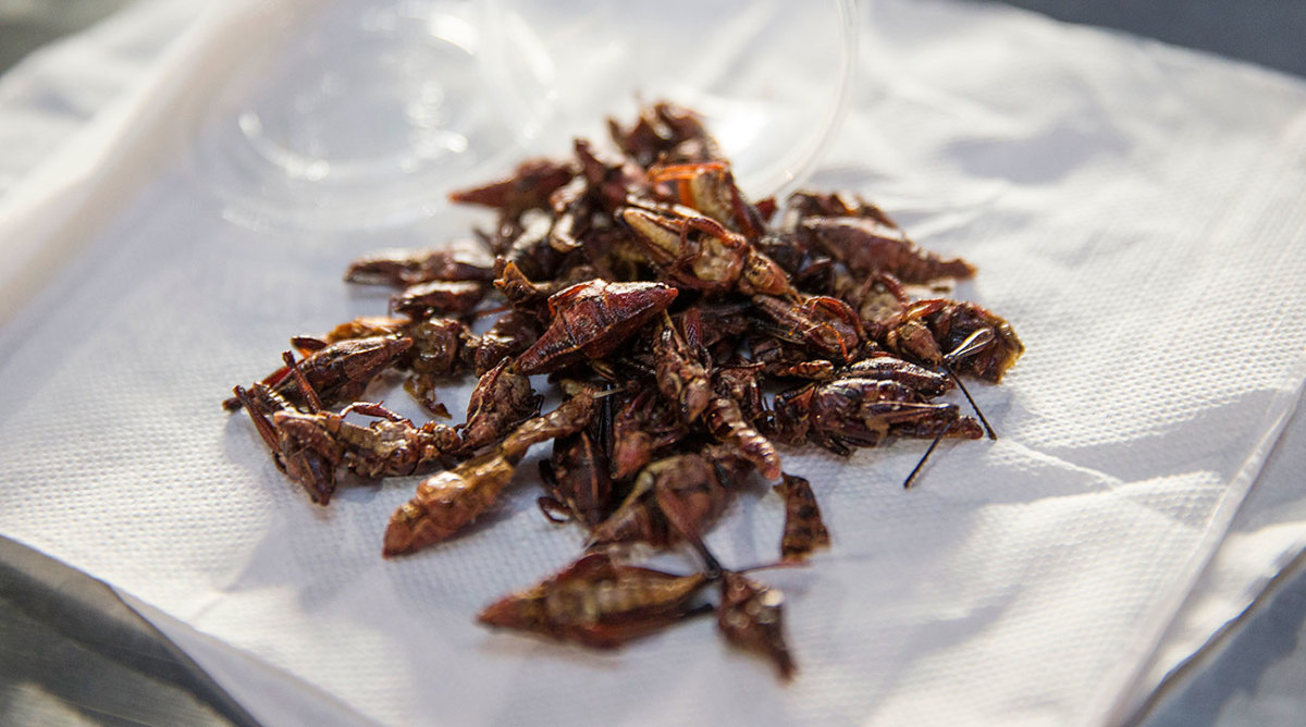 Grasshoppers from Safeco Field.