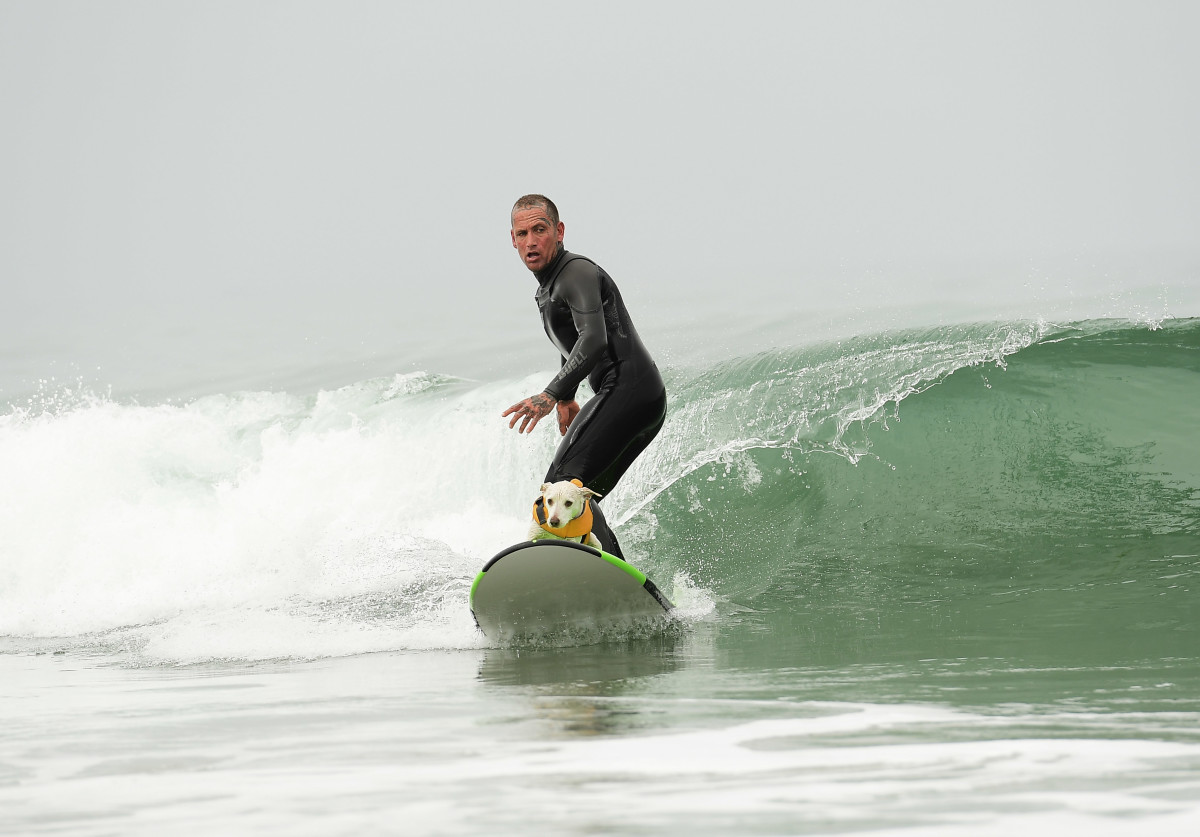 Surfing_Dog_Gallery_018.jpg