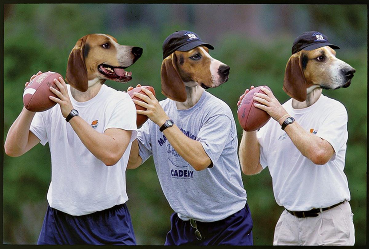 dog-mannings.jpg