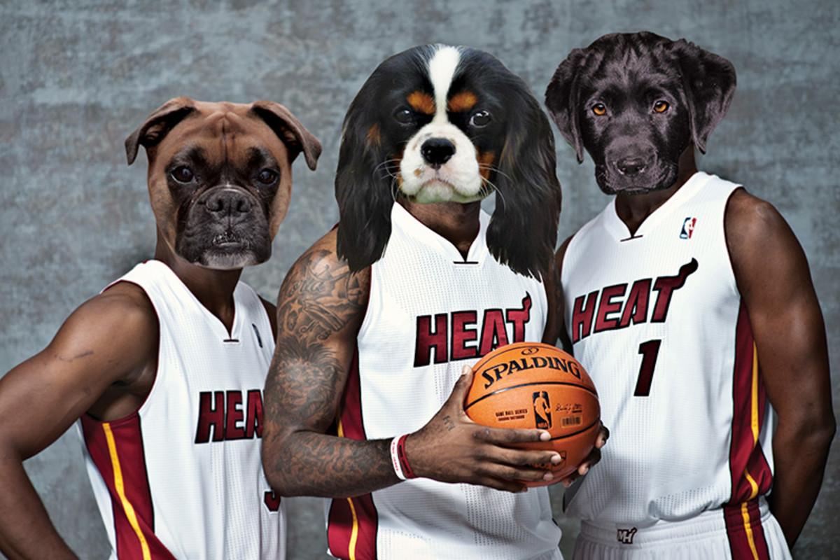dog-heat.jpg