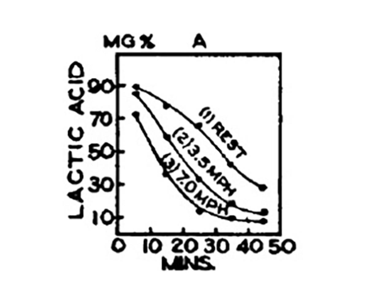 lactic-acid-study-graph.jpg