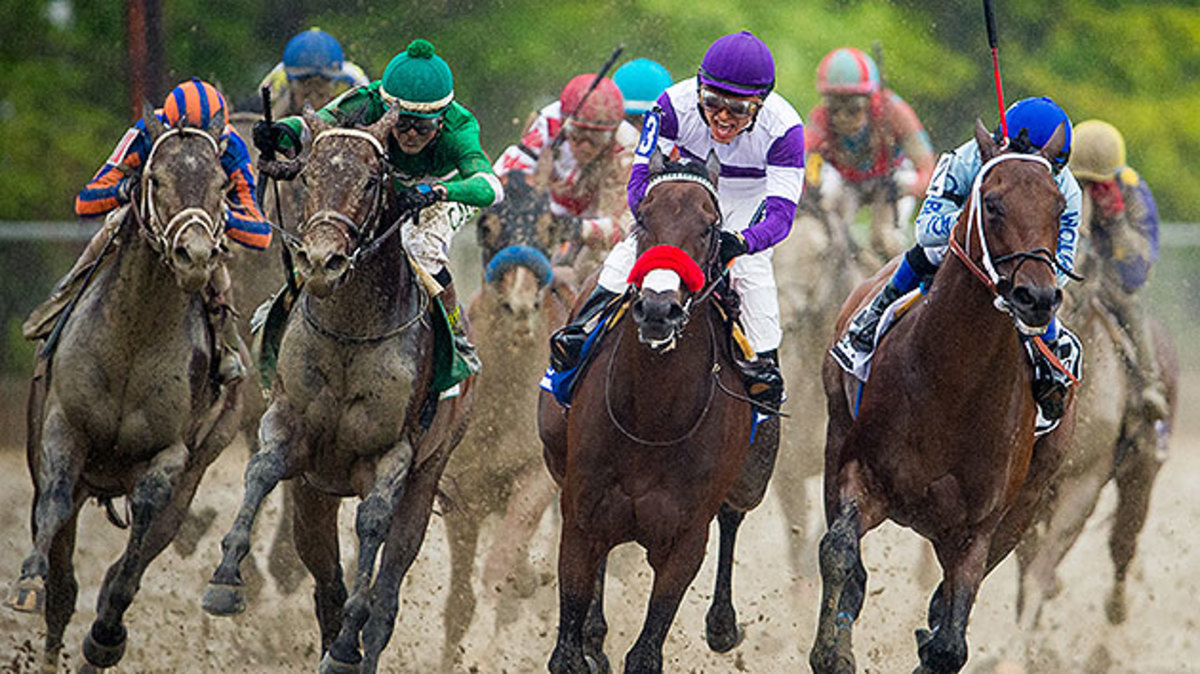 preakness-exaggerator-nyquist-2016.jpg