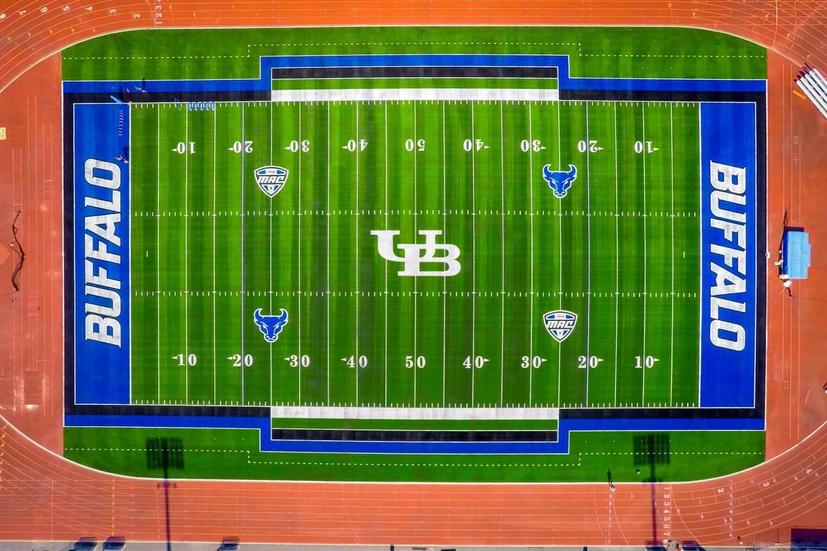 buffalo-field.jpg