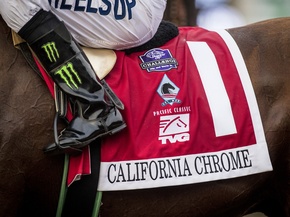 california-chrome-closeup-horse.jpg