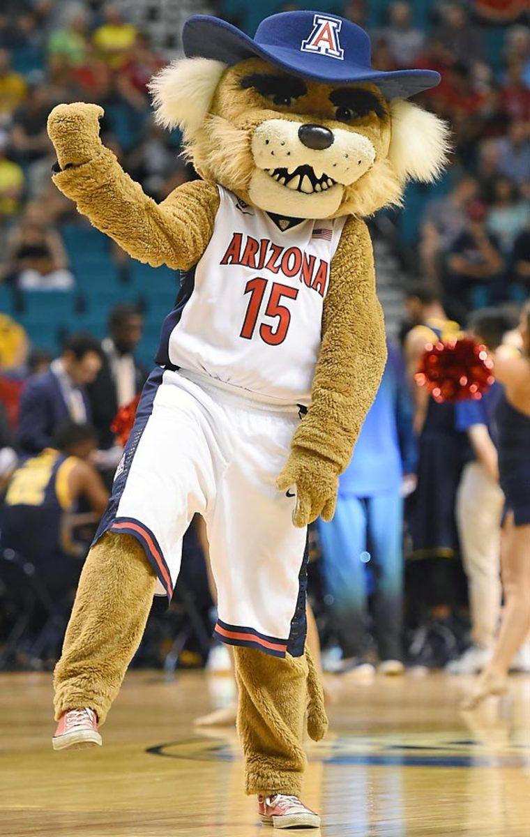 04-arizona-mascot.jpg