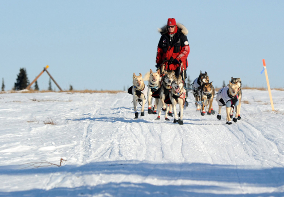 Zirkle drives her dog team across the portage from Kaltag to Unalakleet during the 2014 Iditarod.