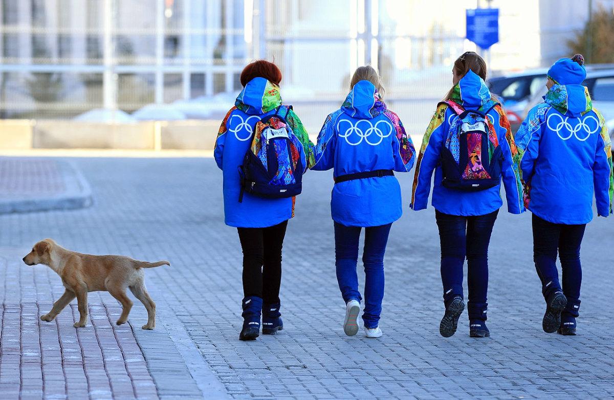 sochi-olympics-stray-dogs-466542485.jpg