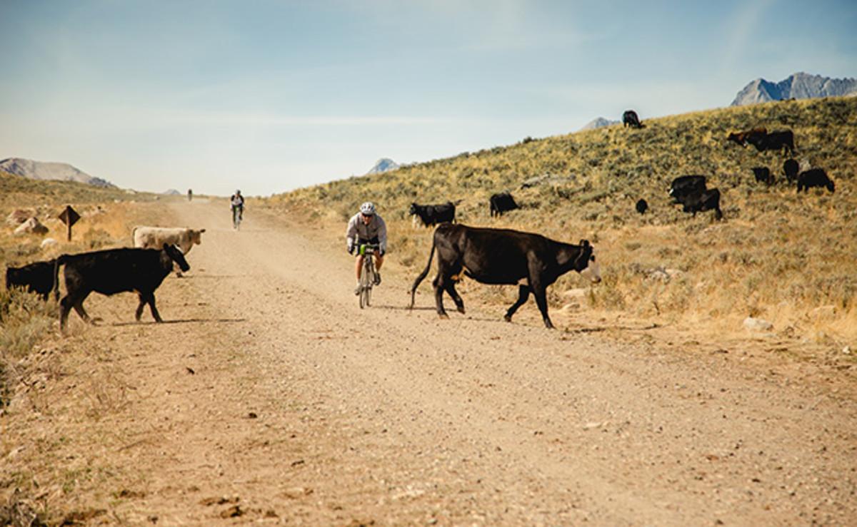 rebecca-rusch-mountain-biking-rebecca-private-idaho-race-630-1.jpg