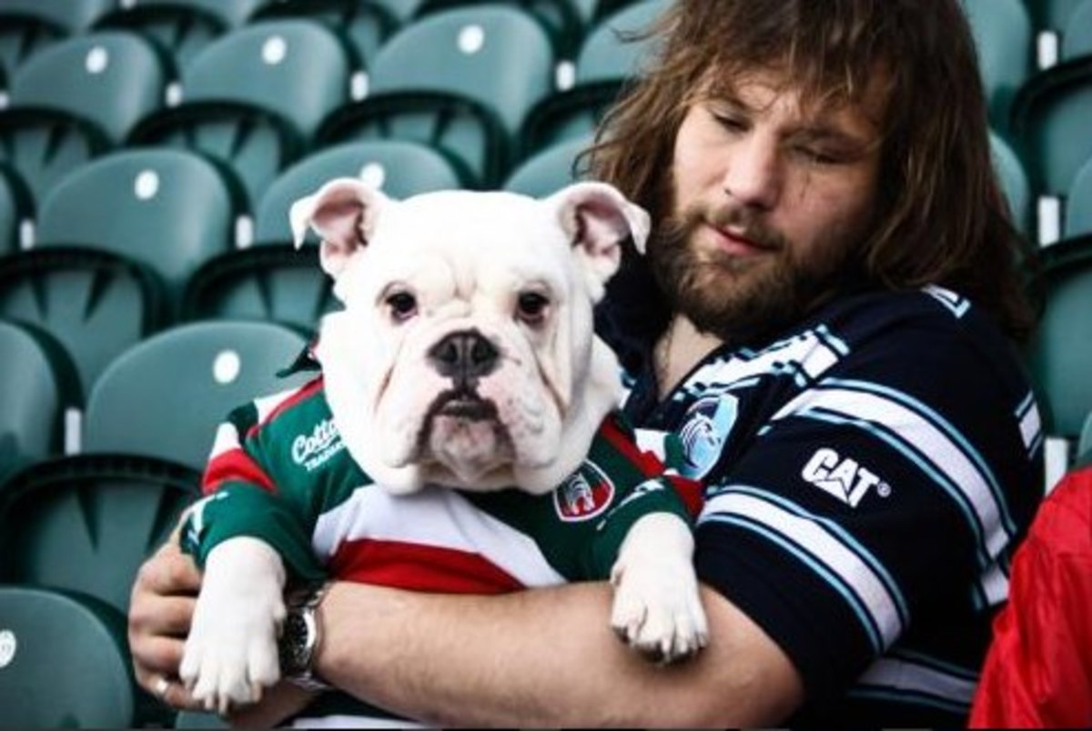 Six-Nations-rugby-italy-dog-bite.jpg
