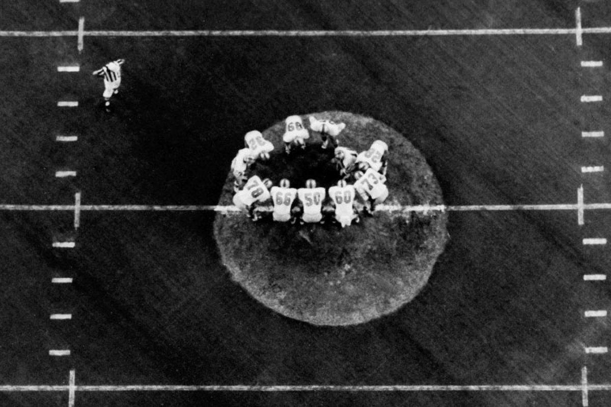 turf-astrodome-overhead-11.jpg