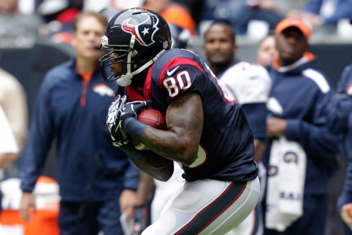 Andre Johnson (Bob Levey/Getty Images)