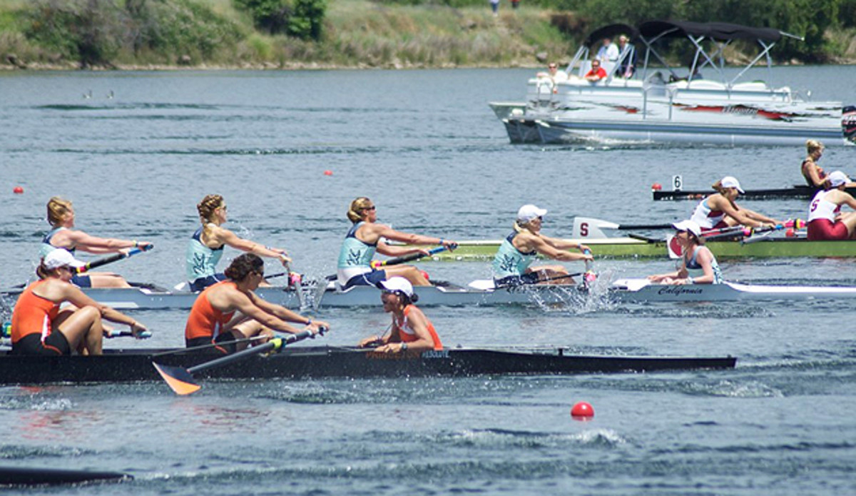 Jill Costello (right, in teal) coxes the Cal women's top varsity boat against Virginia (orange) and Stanford (red).