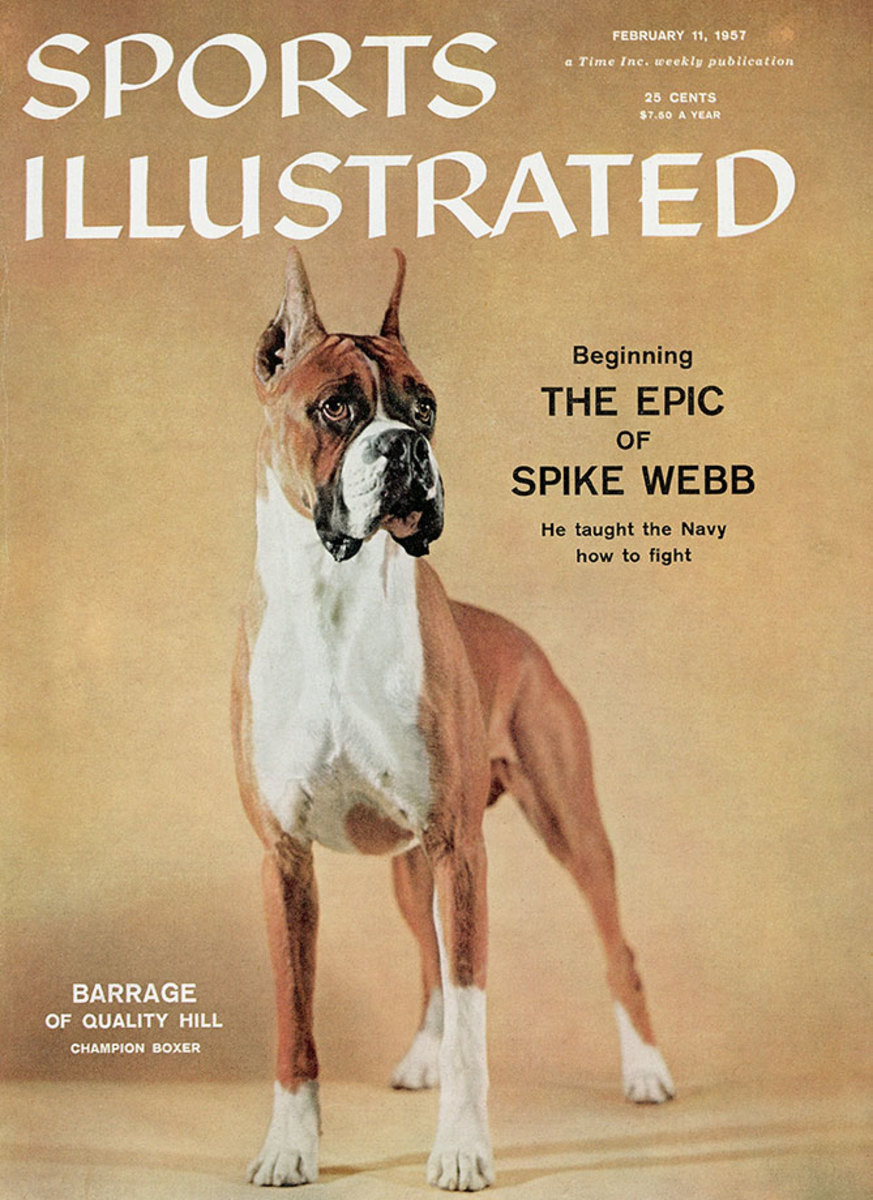 1957-0211-dog-boxer-Barrage-of-Quality-Hill-006272129.jpg