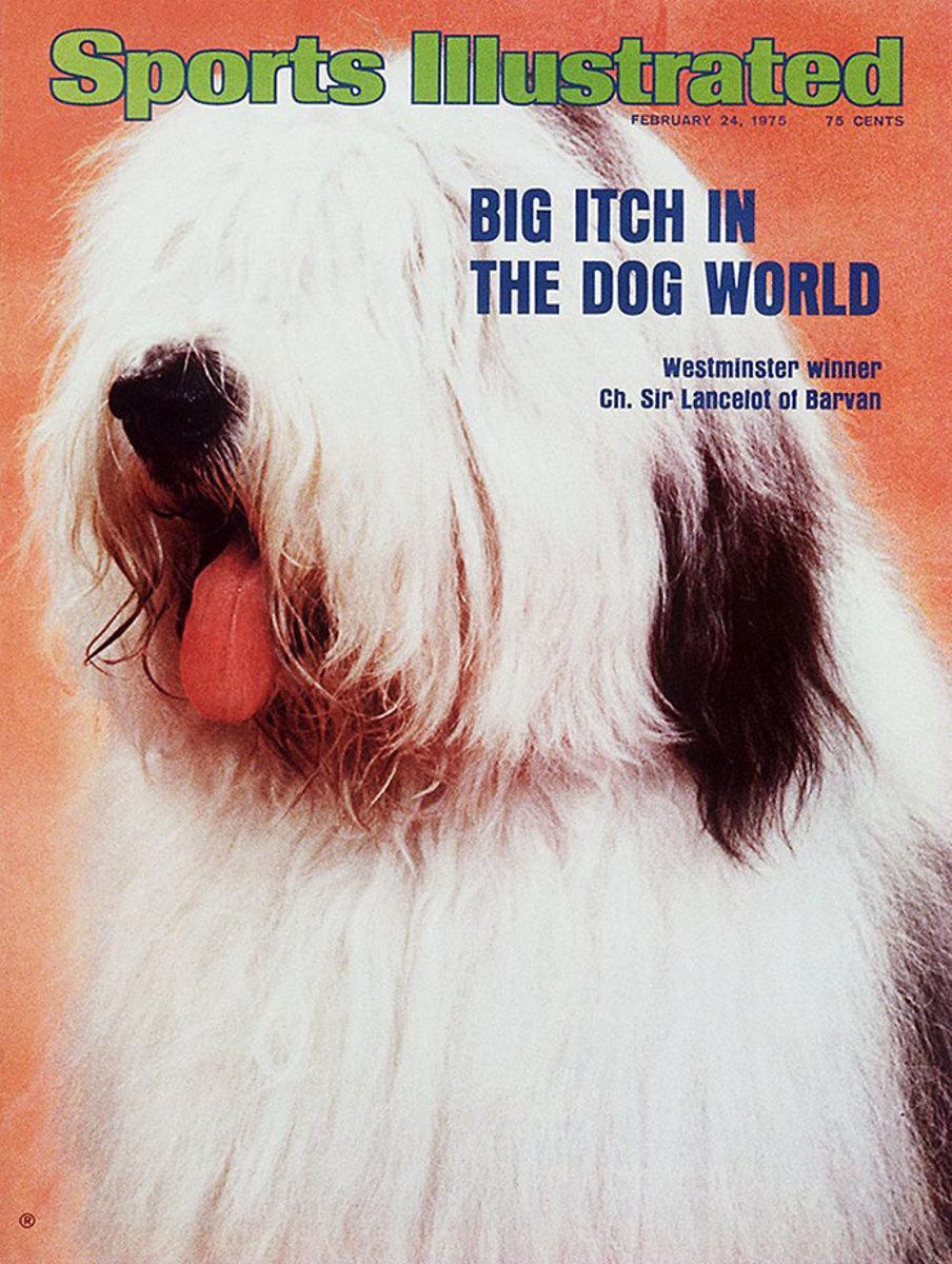 1975-0224-Old-English-Sheepdog-Ch-Sir-Lancelot-of-Barvan-006273052.jpg