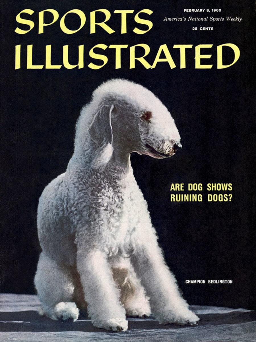 1960-0208-Bedlington-Terrier-Ch-Femar's-Cable-Car-006272282.jpg