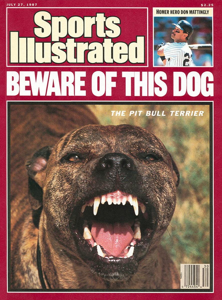 1987-0727-dog-pit-bull-terrier-006273704.jpg