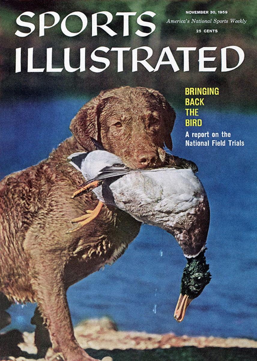 1959-1130-dog-chesapeake-retriever-duck-hunt-006272273r.jpg