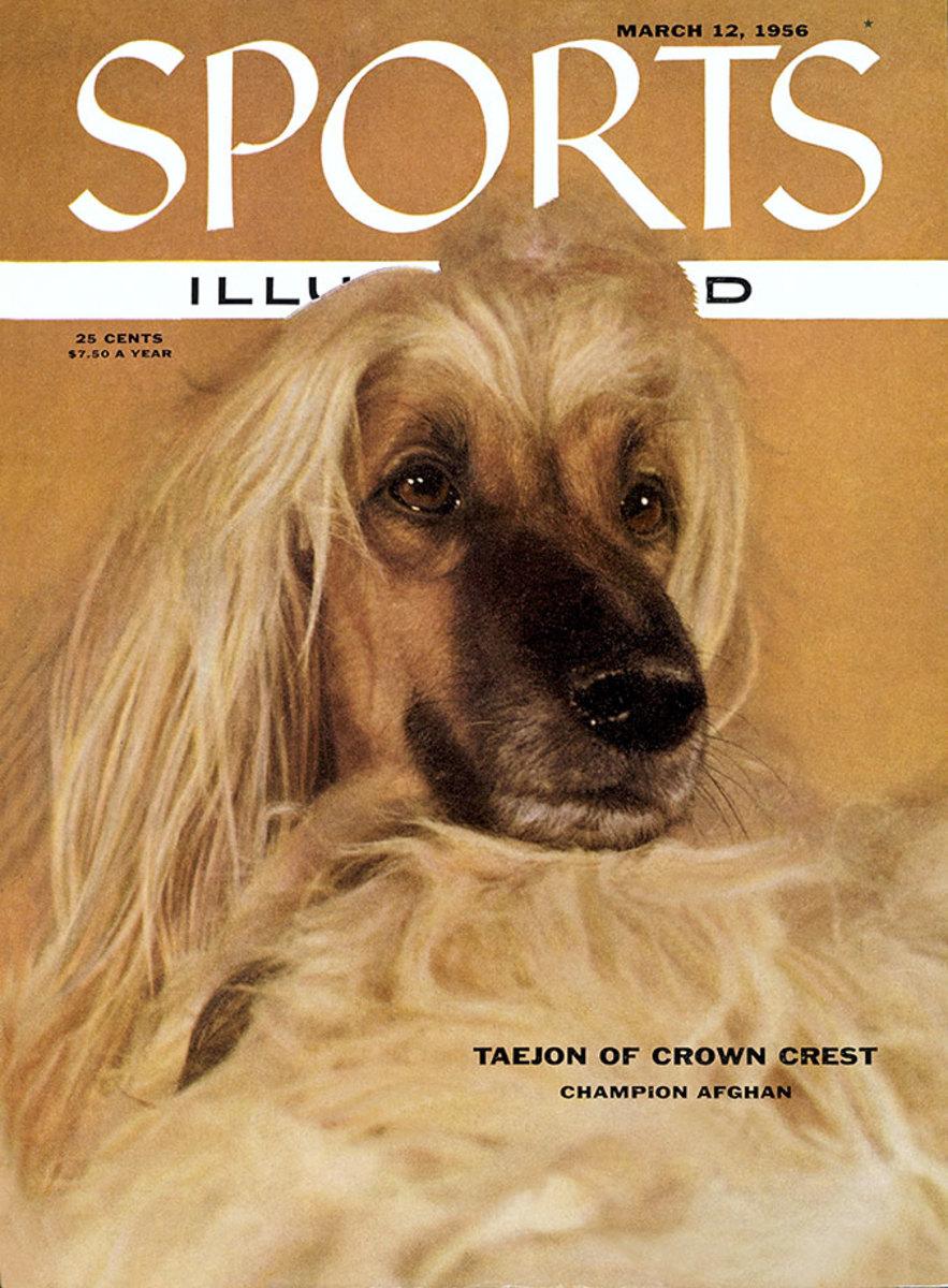 1956-0312-dog-Afghan-Hound-Taejon-of-Crown-Crest-006272082.jpg