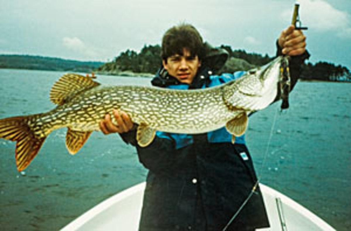 hakan-andersson-fish.jpg