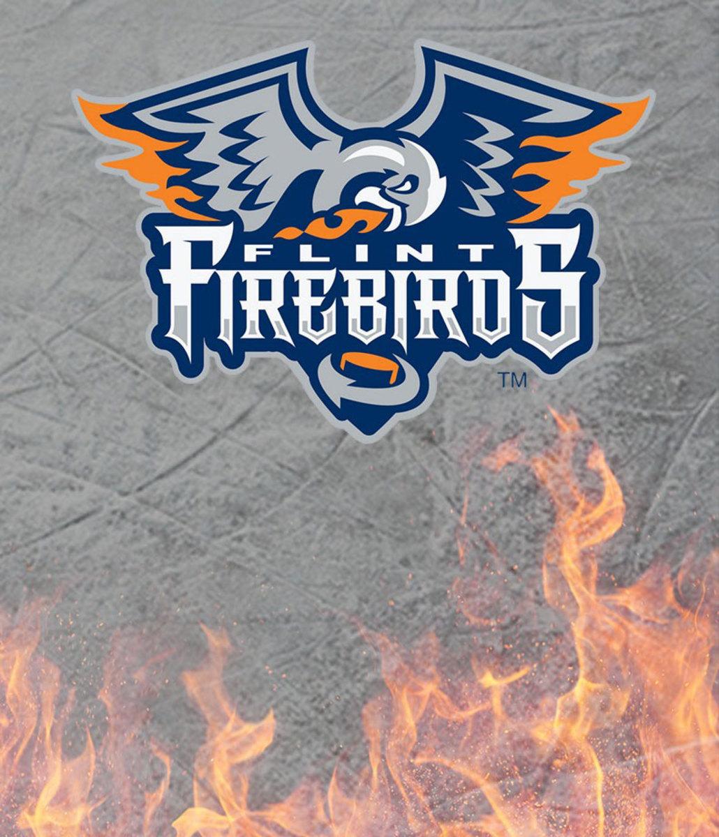 2015-1116-Flint-Firebirds-logo.jpg