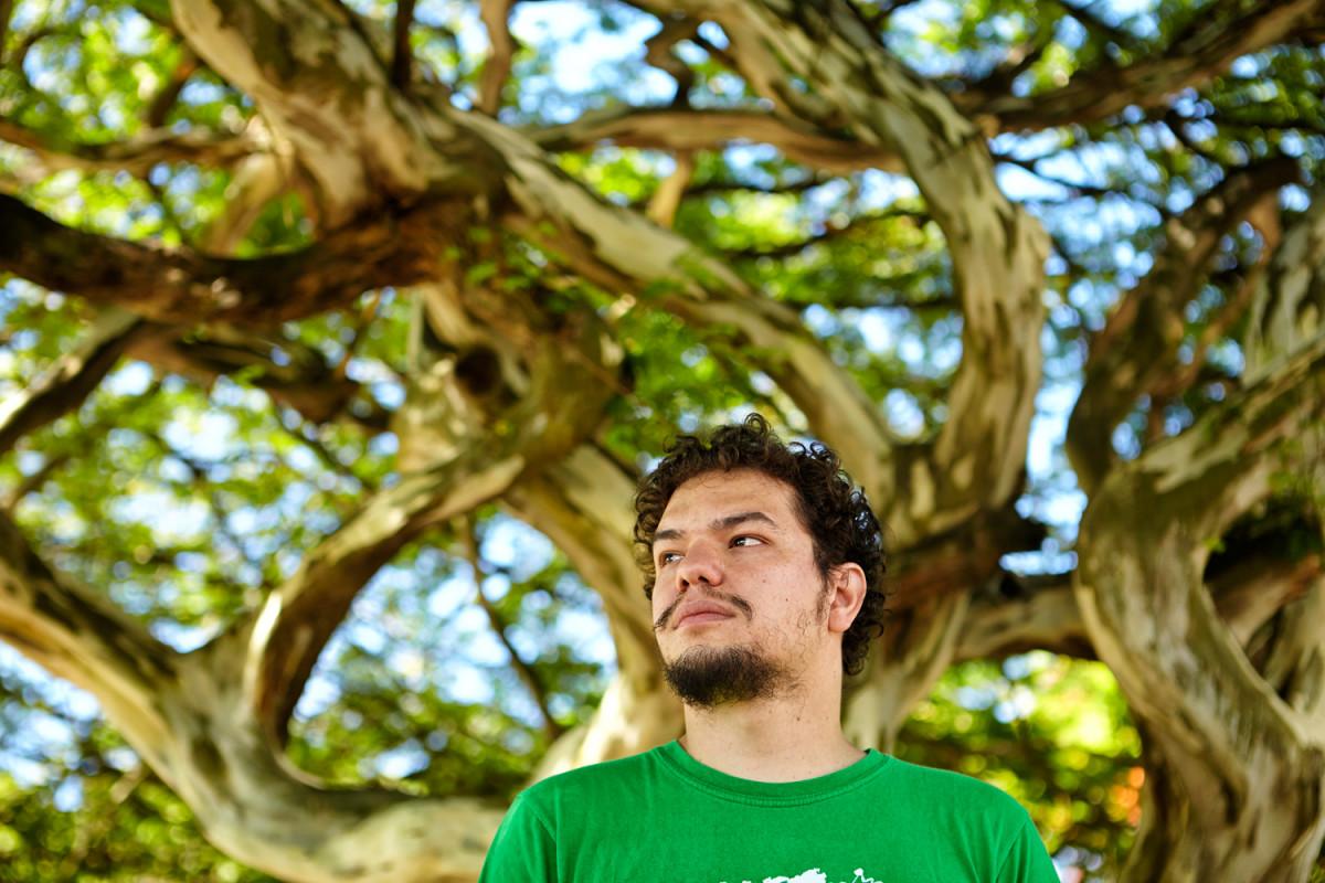 two-brazils-man-tree