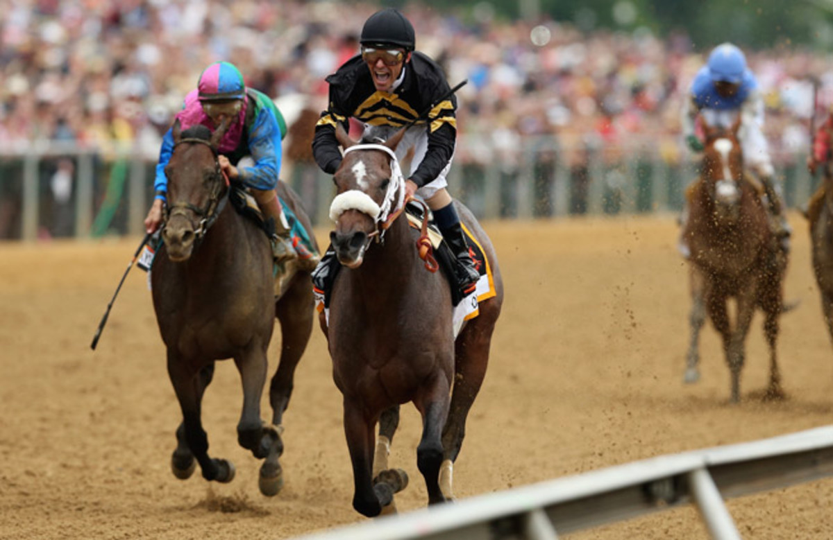Oxbow led from start to finish, winning the Preakness Stakes and ruining Orb's Triple Crown chances.