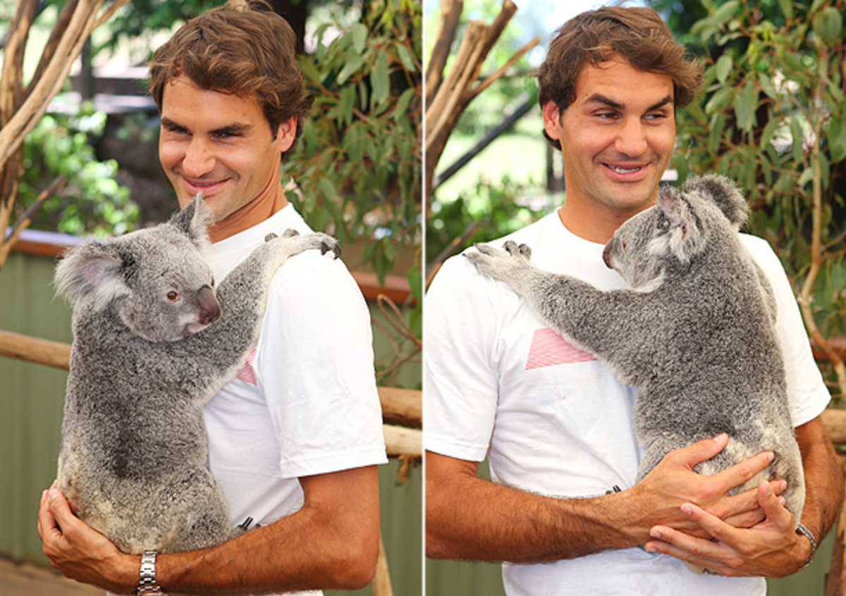Roger-Federer-koala-1