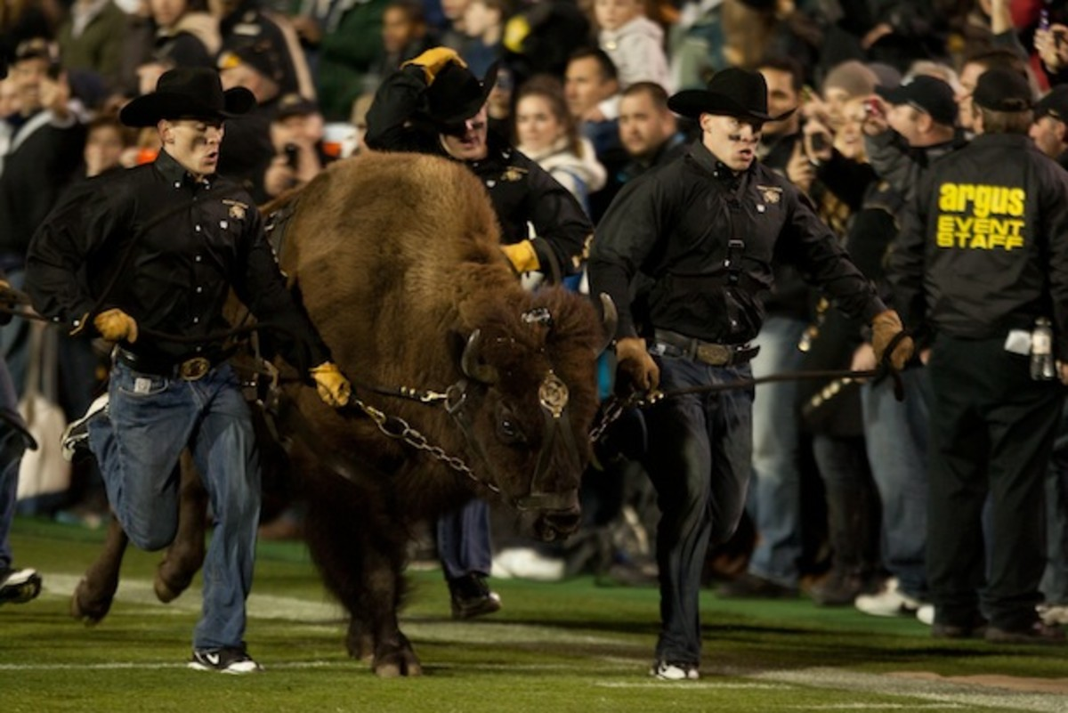 Anything that makes a more pleasing environment for Ralphie is OK by us. (AP)
