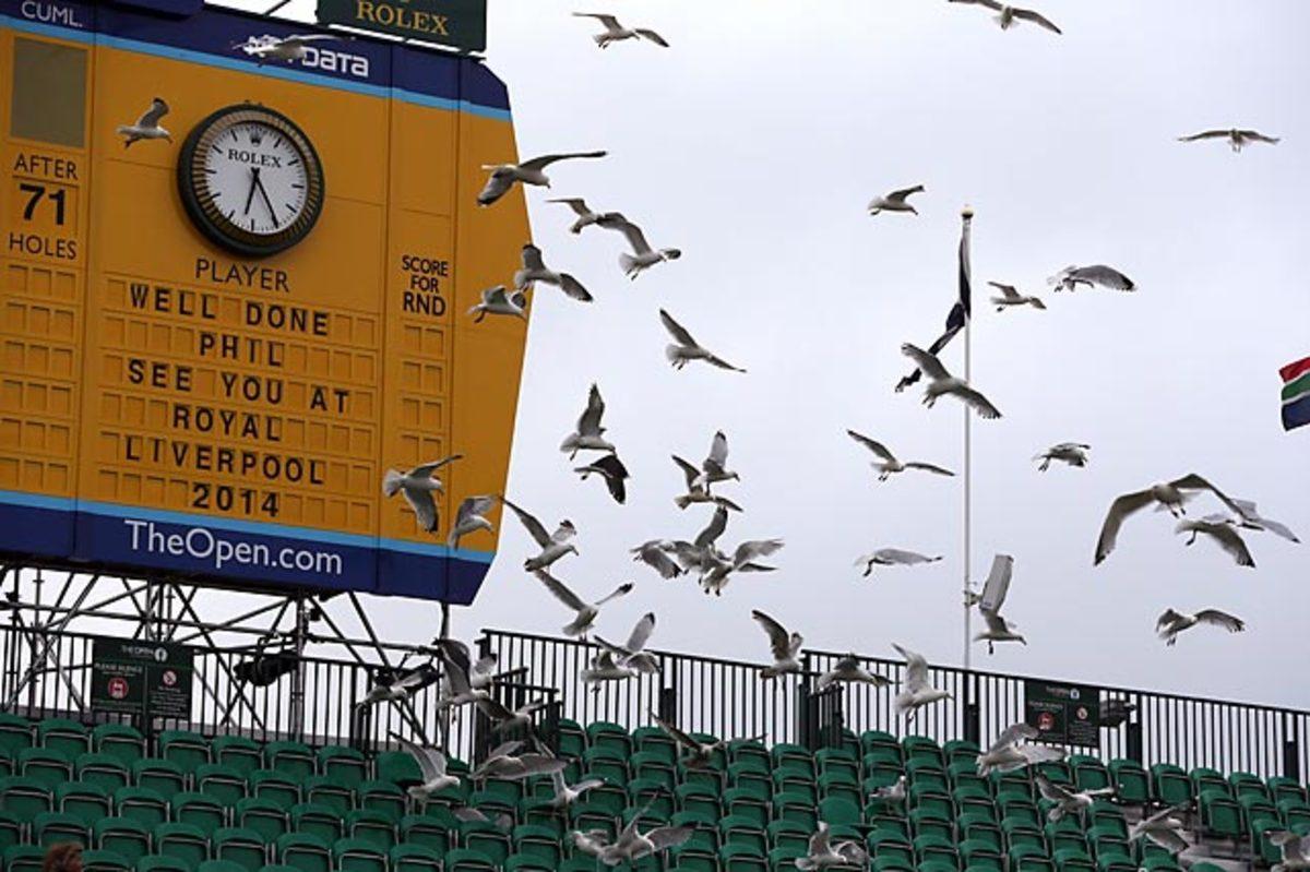 130725112118-birds-british-open-championship-single-image-cut.jpg