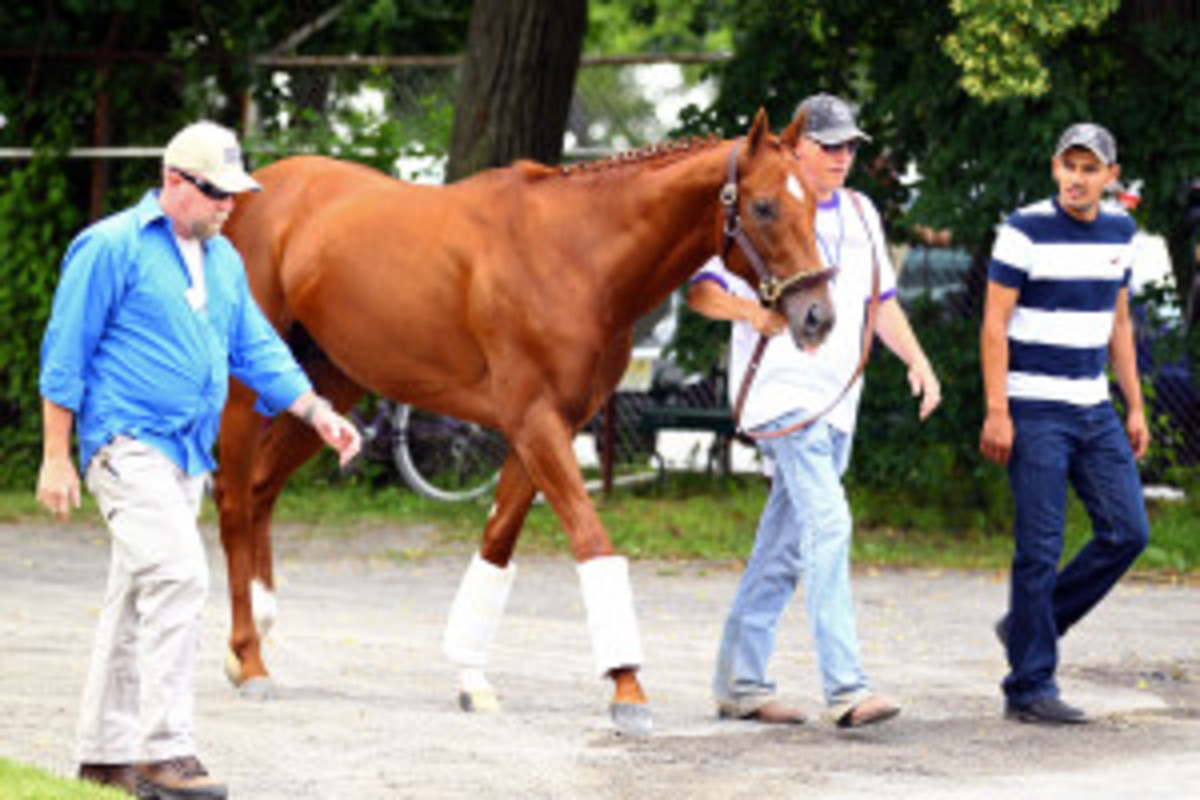 """Triple Crown Hopeful """"I'll Have Another"""" Will Not Run Belmont"""