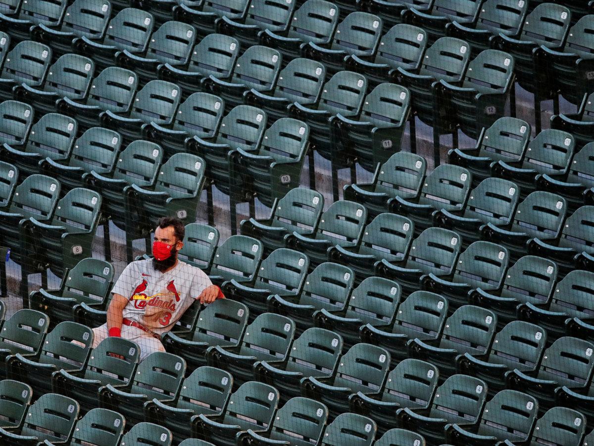 Matt Carpenter sitting in the stands