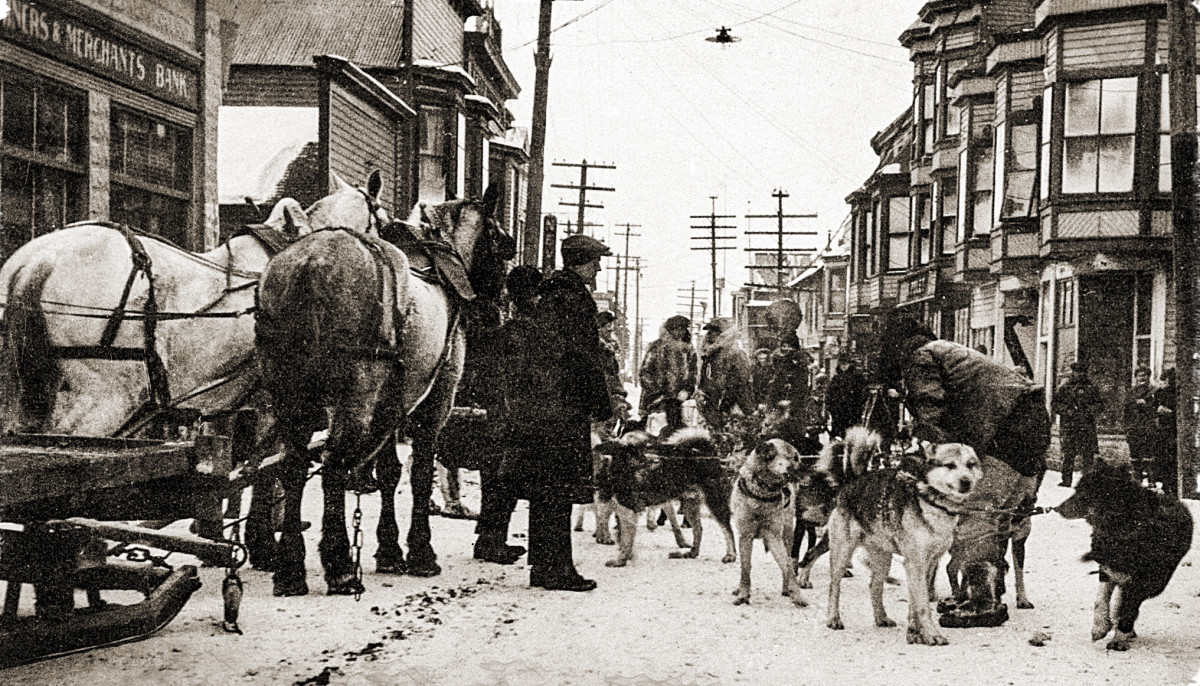 Kaasen and Balto arrive in Nome, heralded as heroes, on Feb. 2, 1925.