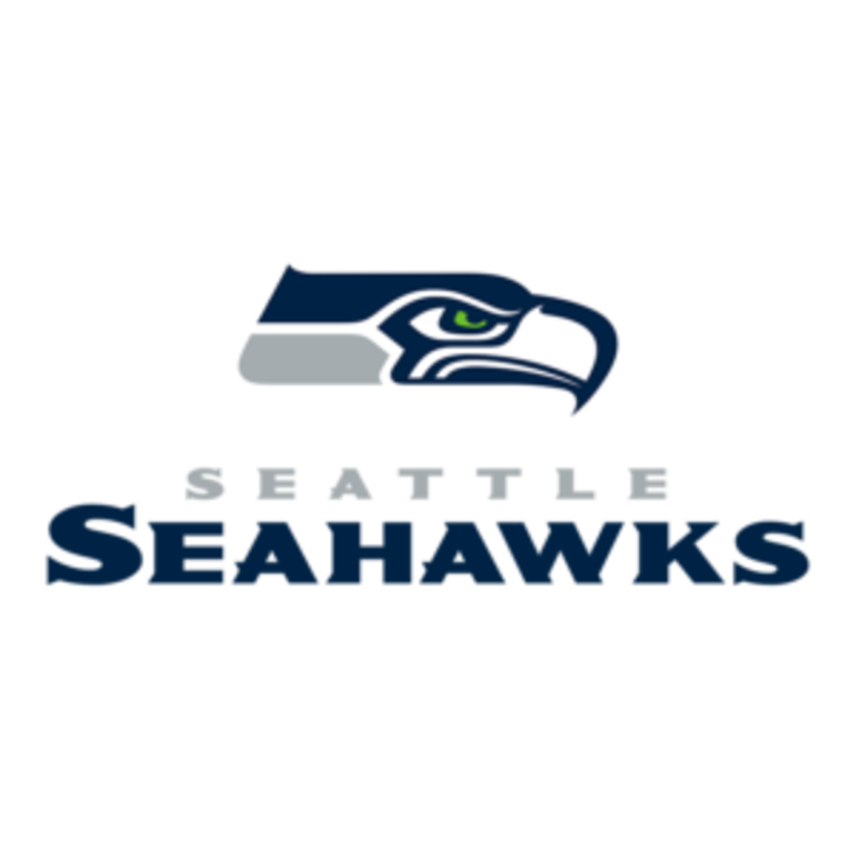 nfl-seattle-seahawks-team-logo-300x300