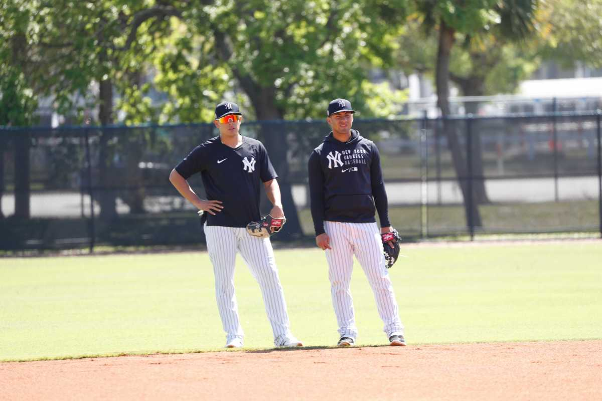 Yankees infielders Gio Urshela and Gleyber Torres