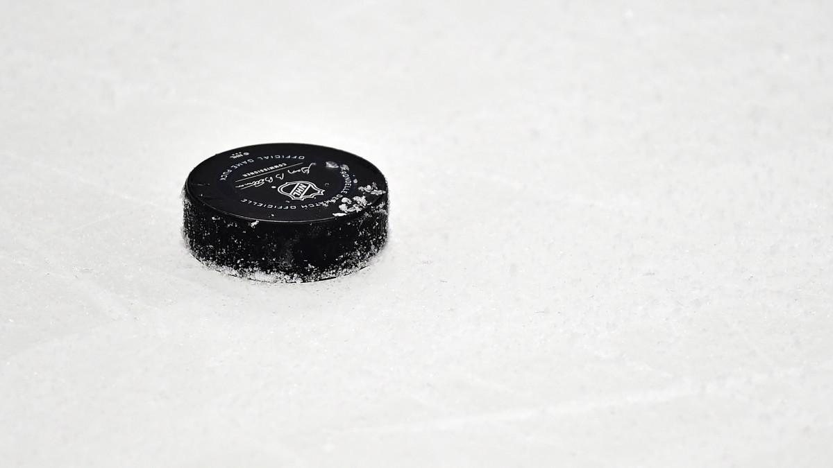 NHL Postpones 2020 International Games