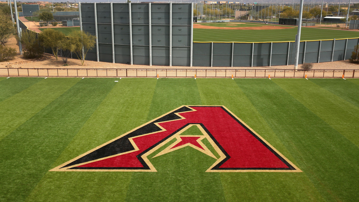 Report: D-Backs Minority Owners Suing Over Forced Buyouts