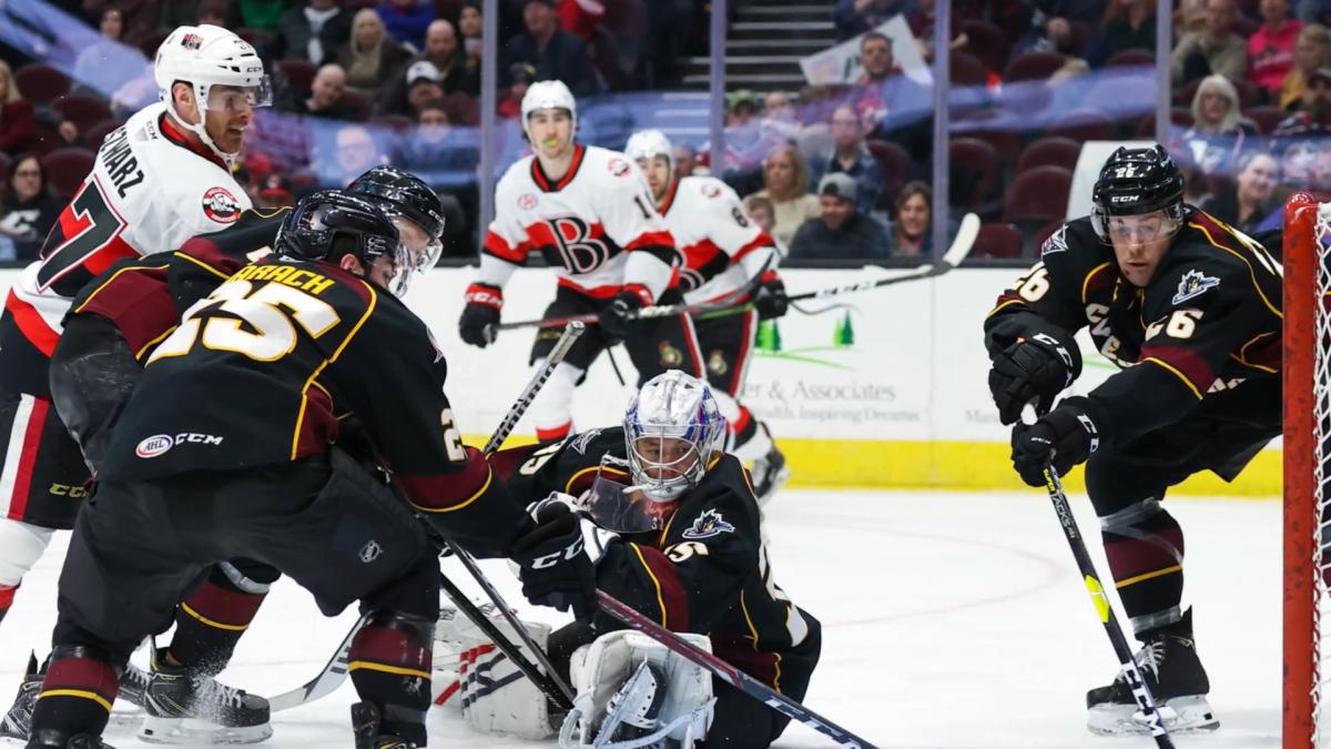 AHL Cancels Remainder of Its Season