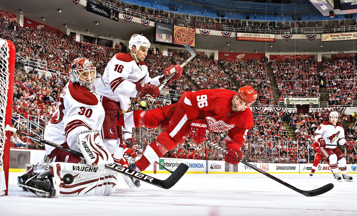 red-wings-coyotes