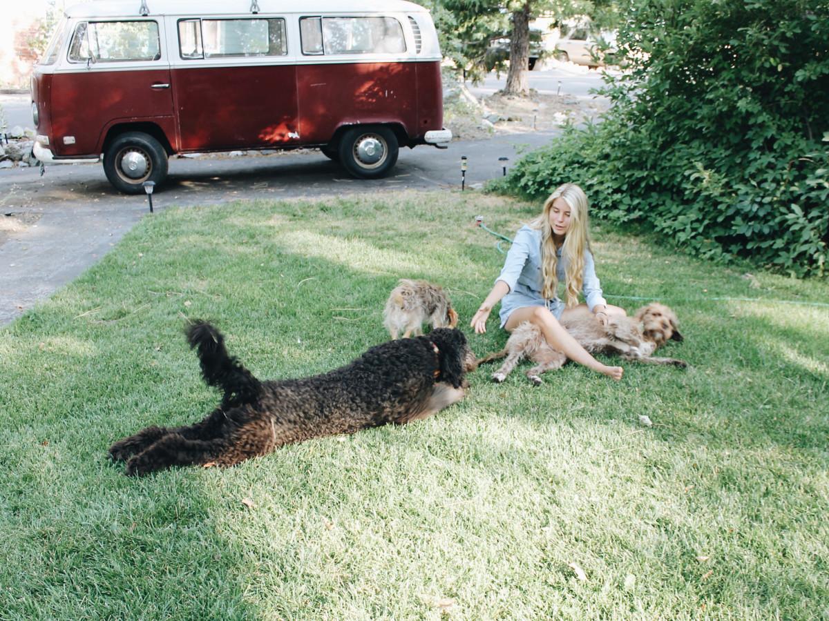 MaddieMastro&Dogs1