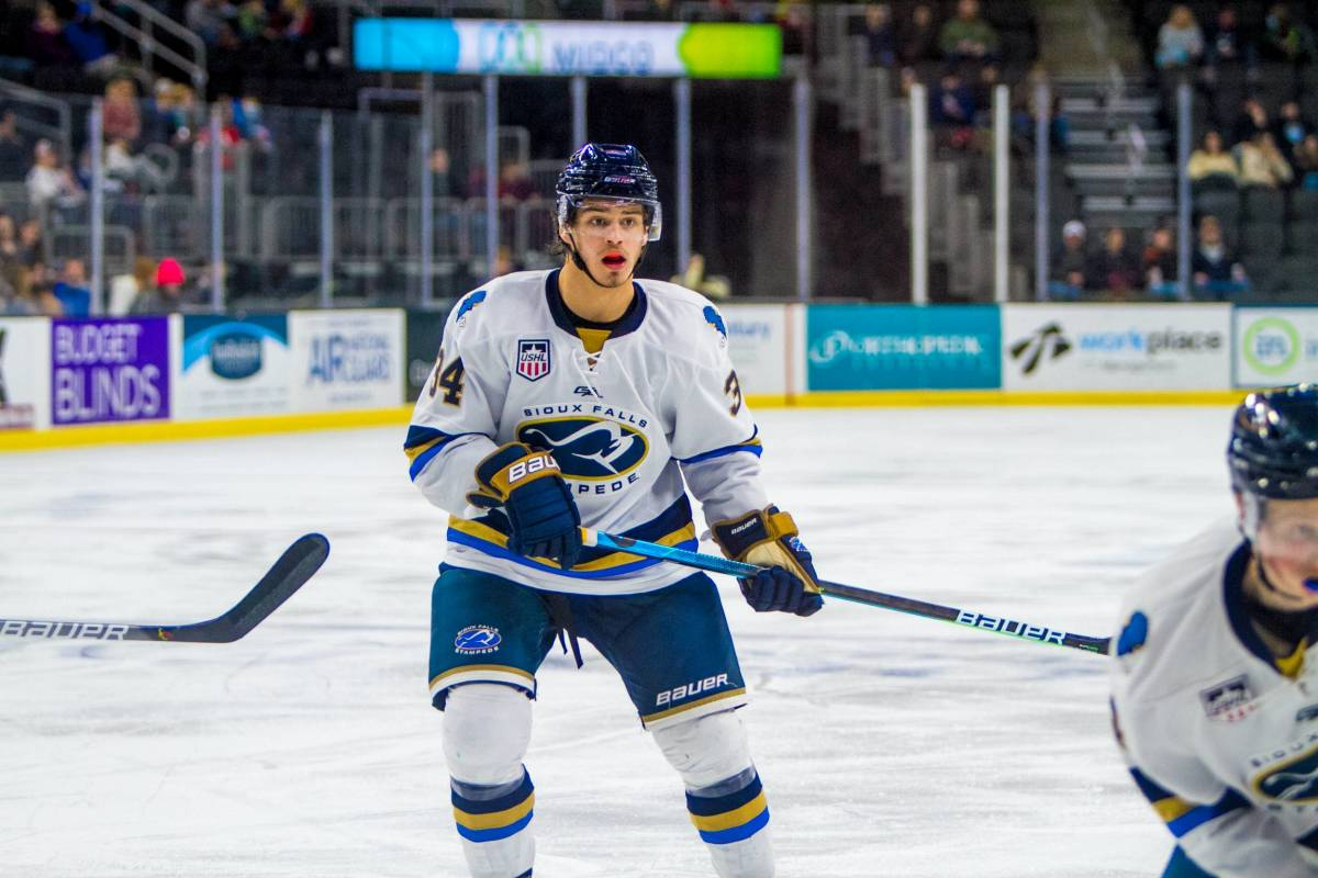 Cole Sillinger. Photo courtesy Sioux Falls Stampede.