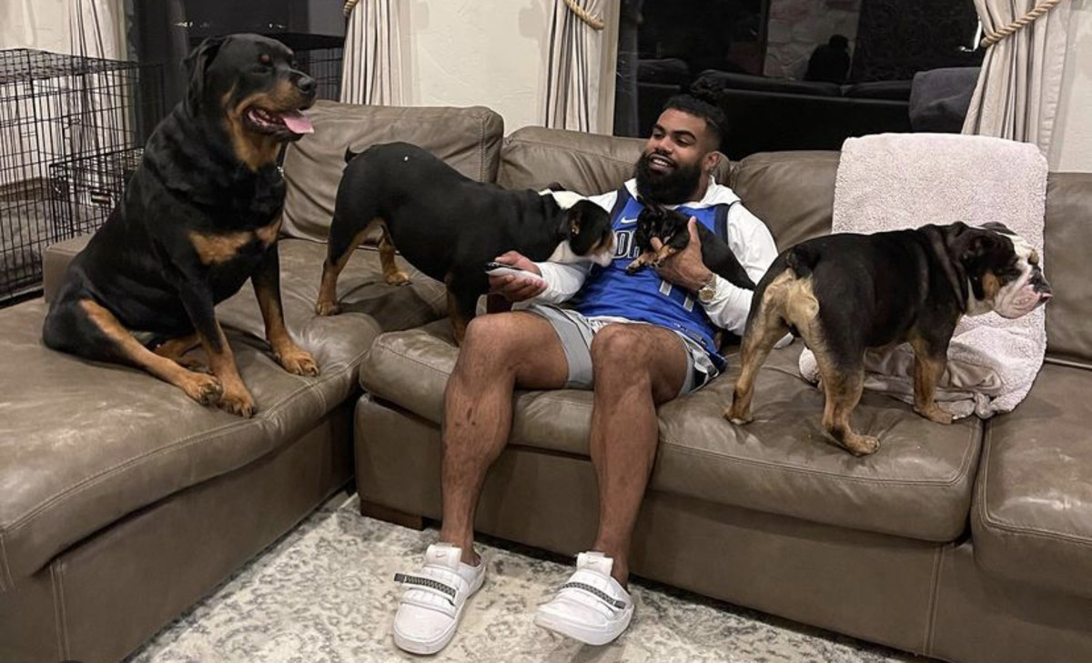 Cowboys RB Ezekiel Elliott And His Dogs Under Investigation For Attack -  FanNation Dallas Cowboys News, Analysis and More