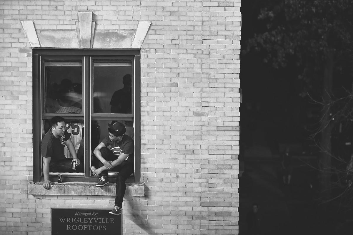 cubs-window