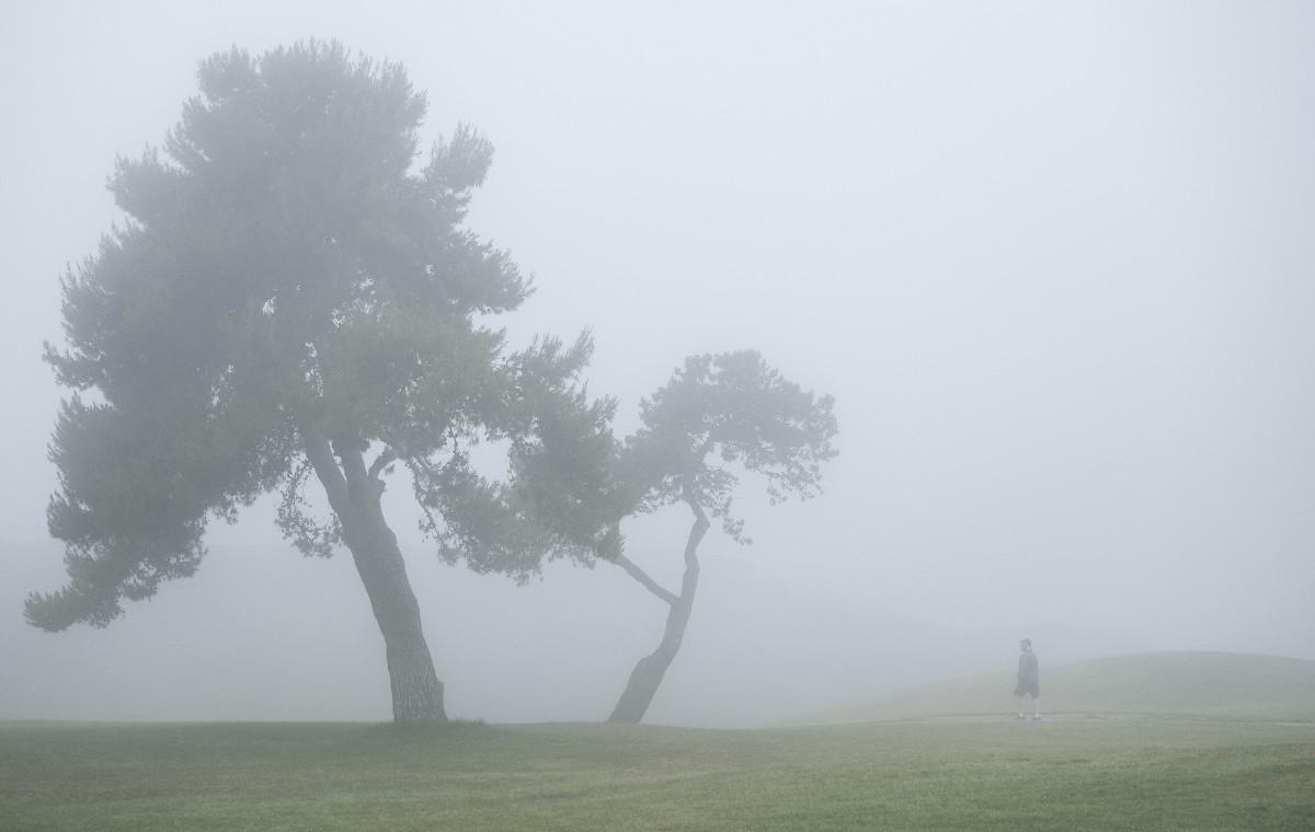 US_Open_Golf_00003
