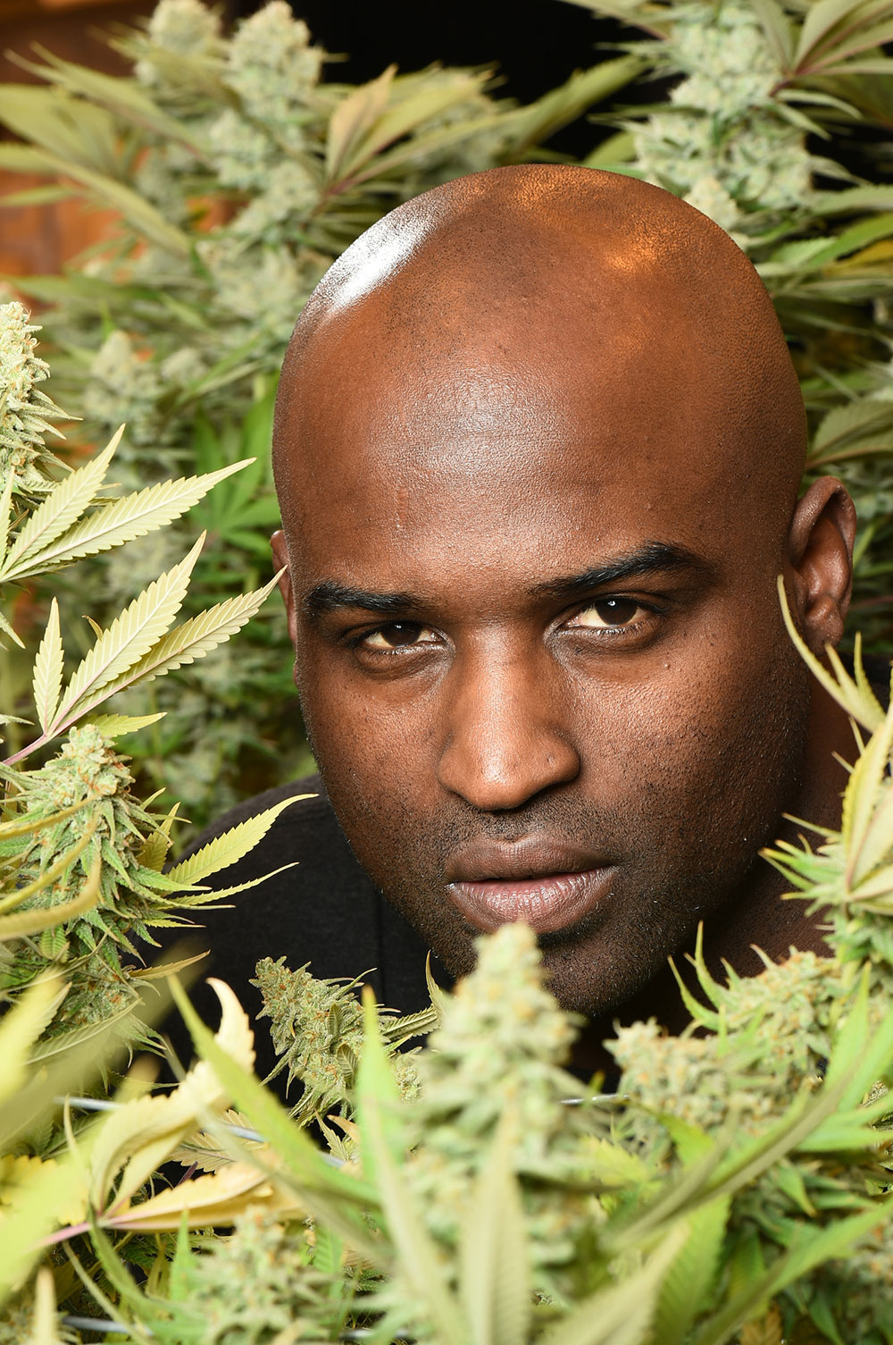 ricky williams on weed drug testing nfl career si longform
